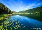 Abant Ve Gölcük. -Doyasıya Fotoğraf-Doğa Ve İlkbahar 25 Eylül 2016