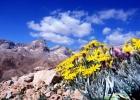 Niğde Aladağlar Emler (3726 M) Zirve Tırmanışı 25-27 Haziran 2017